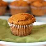 Double Pumpkin and Cranberry Muffins