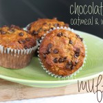 chocolate chip molasses muffins